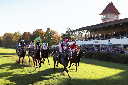 Saisonfinale im Scheibenholz, Foto: Scheibenholz